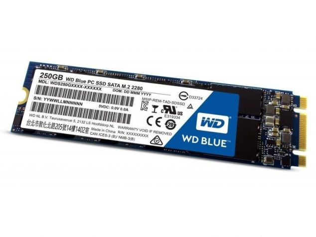 Western Digital WD Blue SSD 250 GB M.2 2280 WDS250G2B0B