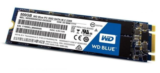 Western Digital WD Blue SSD 500 GB M.2 2280 WDS500G2B0B